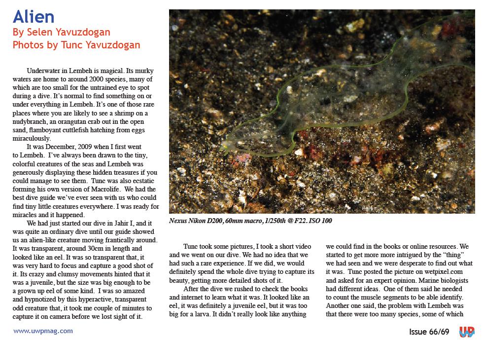 Alien is on UWPMagazine