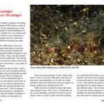 Article on Underwater magazine
